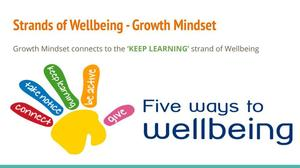 Wellbeing project growth mindset